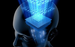 Вчені з'ясували, як завантажувати знання в мозок